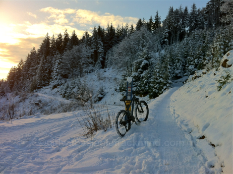 Snow at Glentress