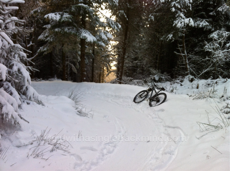Boarder cross or singletrack?!