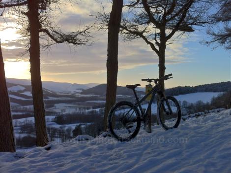 Snow at Glentress