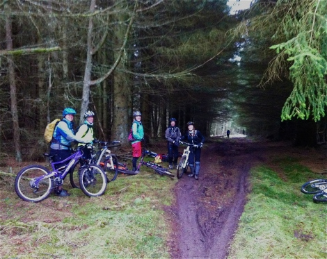 Learning the roots on Alistair Lees trail