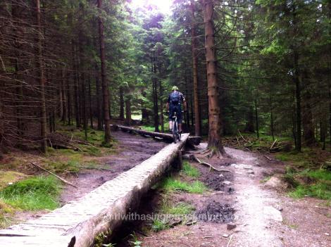 Log skinnies at Gisburn Forest