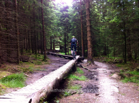 Log skinnies at Gisburn Forest
