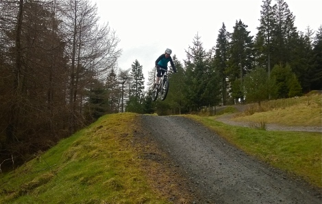 Glentress jumps