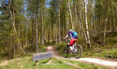 The Monkey Trail, Cannock Chase