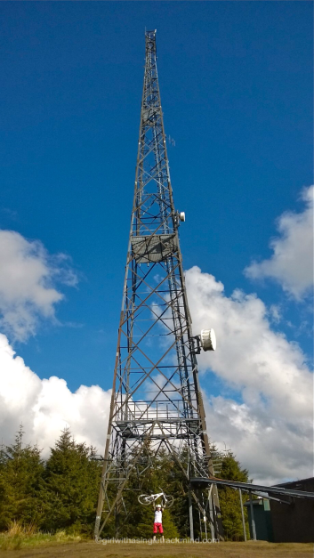 Mast at top of Glentress Black route