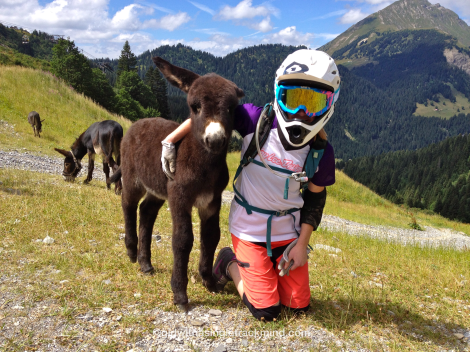 Making friends with the locals in Châtel