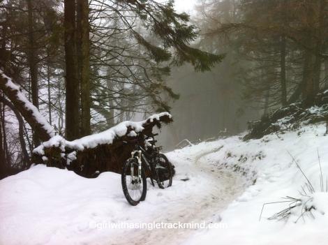 Glentress in the snow