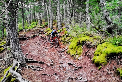 Gallinero mountain biking, Pyrennes